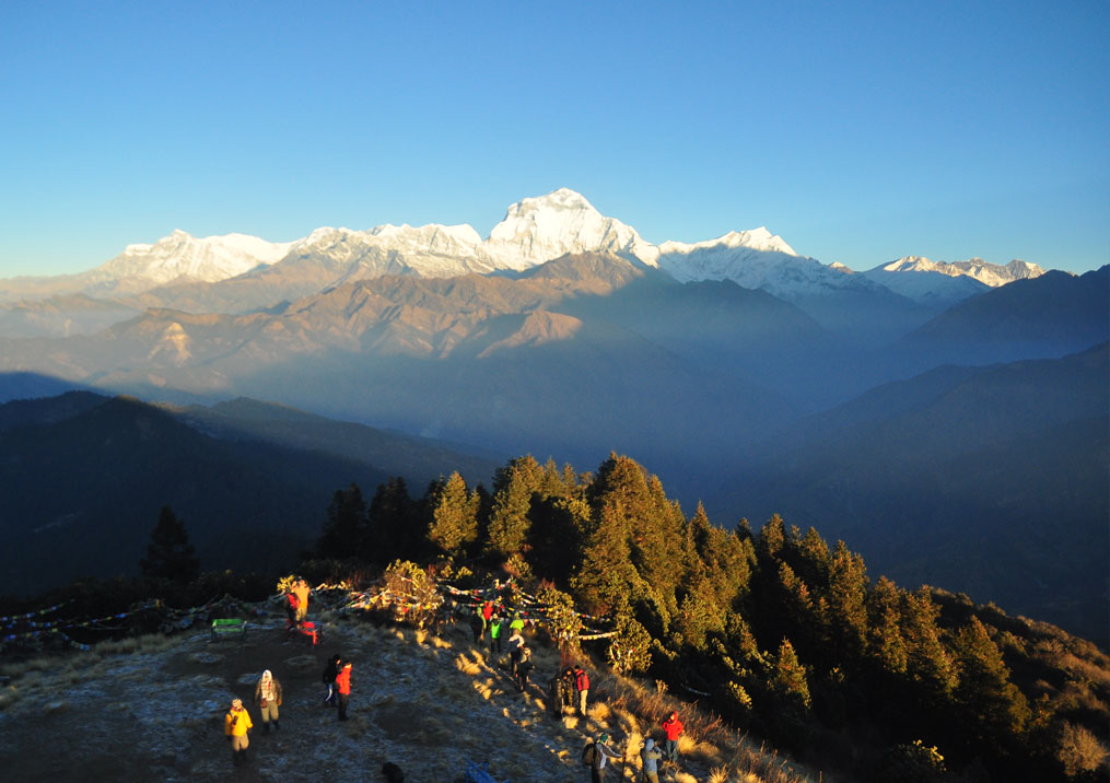Day 6: Trek from Ghorepani (2874m) to Poon Hill (1 hr, 3200m) and to Ulleri (5hrs, 1500m)