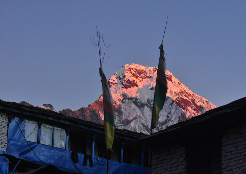 Day 4: Trek from Ghandruk (2012m) to Tadapani (5 hrs, 2630m)