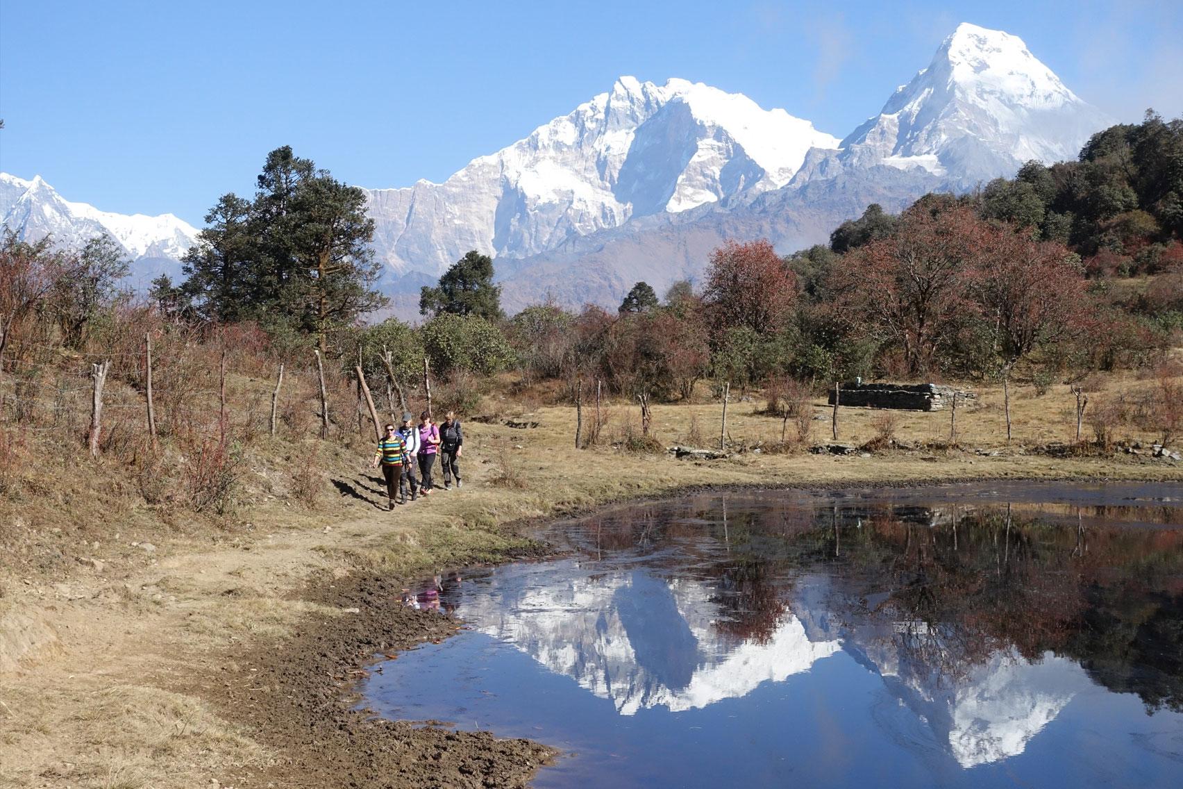Day 6: Trek from Mohare Danda (3300m) to Tikot (4hrs, 2250m)